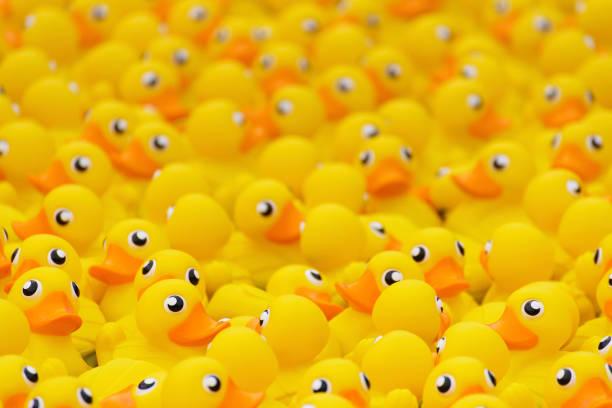 Gelbe Spielzeug-Ente – Foto