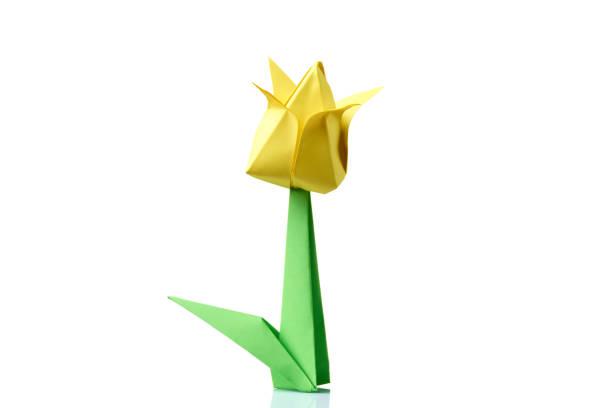 origami fleur de tulipe jaune - origami photos et images de collection
