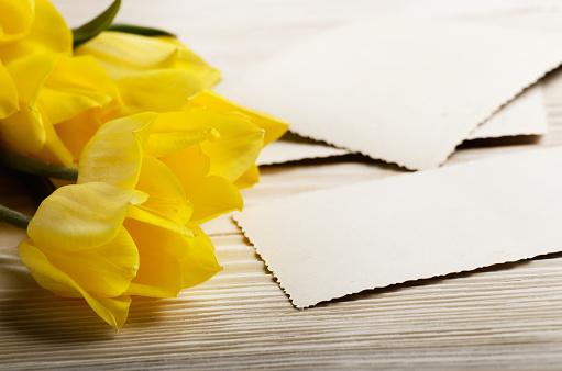 노란 튤립과 자연 나무 배경 텍스트 위한 공간에 빈 인사말 카드 결혼식에 대한 스톡 사진 및 기타 이미지