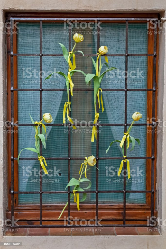 Tulipanes amarillos en un windows en un pueblo español Begur para una independencia catalana - foto de stock