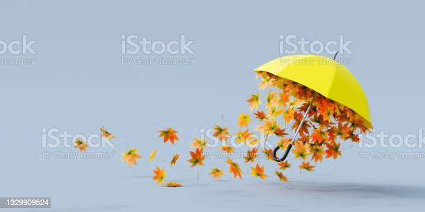 Photo of Yellow umbrella flying with colorful autumn leaves on gray background