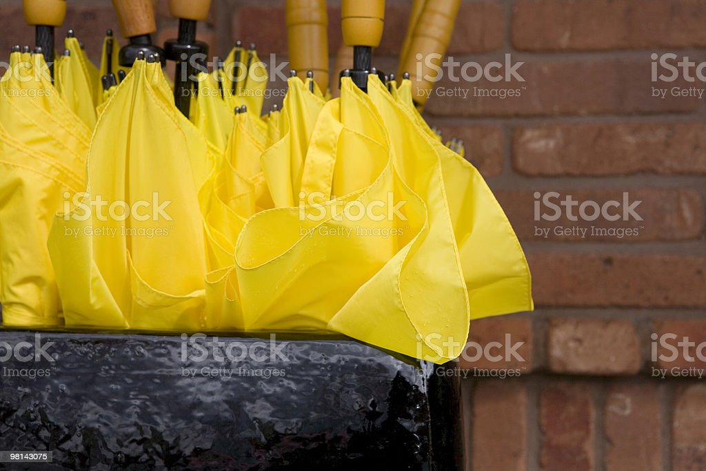Yellow Umbrella Series - Brick Wall royalty-free stock photo