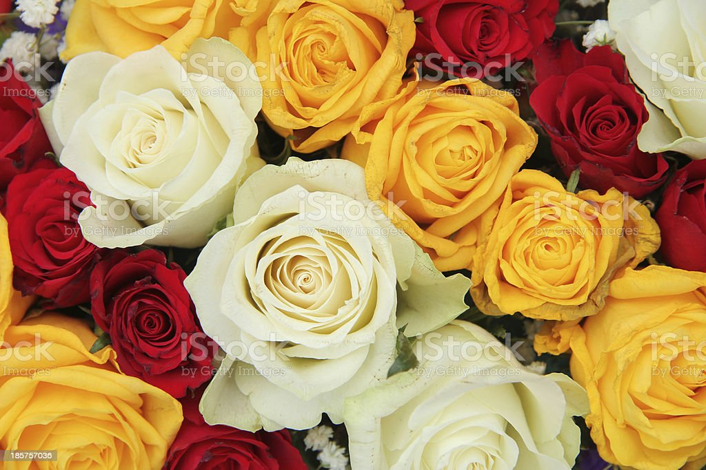 Yellow, white and red roses in a wedding arrangement royalty-free stock photo