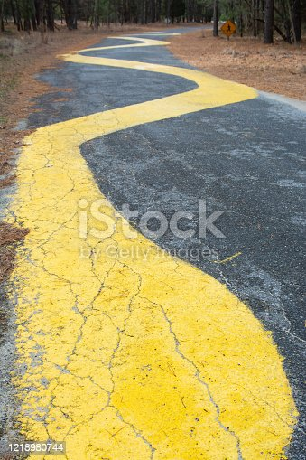 A bright yellow painted pathway on black asphalt winds away into distance through pine forest