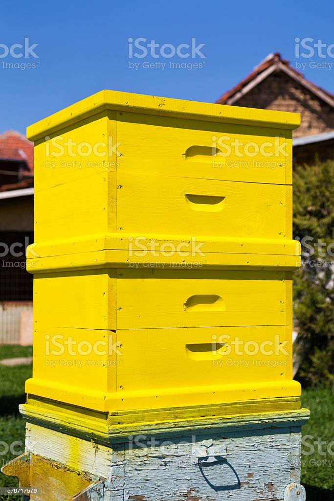 Yellow wooden freshly painted beehive stock photo