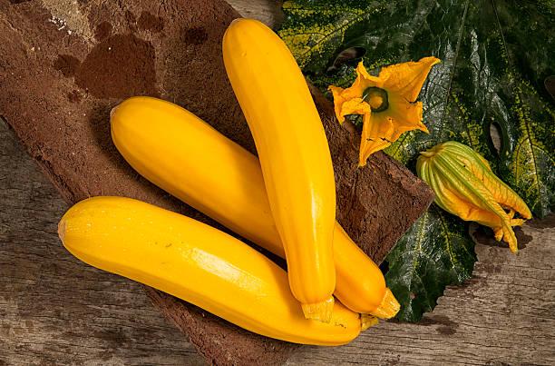 Gelbe Zucchini mit Blume – Foto