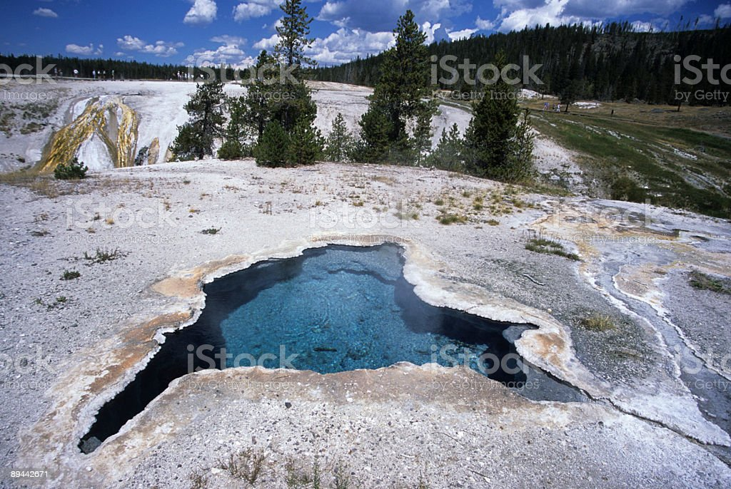 Yellowstone bollente primavera foto stock royalty-free
