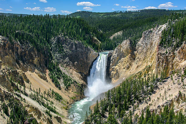 Yellowstone Falls in National Park, Wyoming USA – Foto