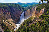 Yellowstone Falls - Grand Canyon of the Yellowstone - Yellowstone National Park, Montana (MT).