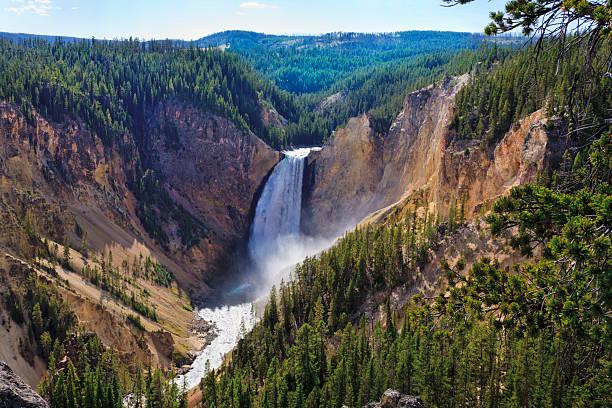 Yellowstone Falls: River, Grand Canyon, National Park, Montana MT stock photo