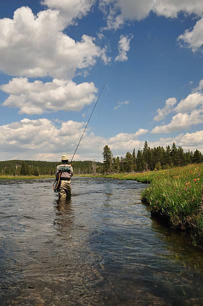 yellowstone pesca com mosca - com os pés na água - fotografias e filmes do acervo