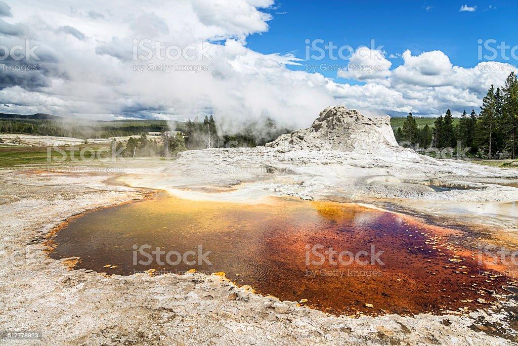 Yellowstone National Park Castle Geyser stock photo