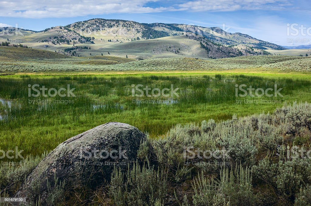 Yellowstone National Park in late summer, Wyoming, USA. stock photo