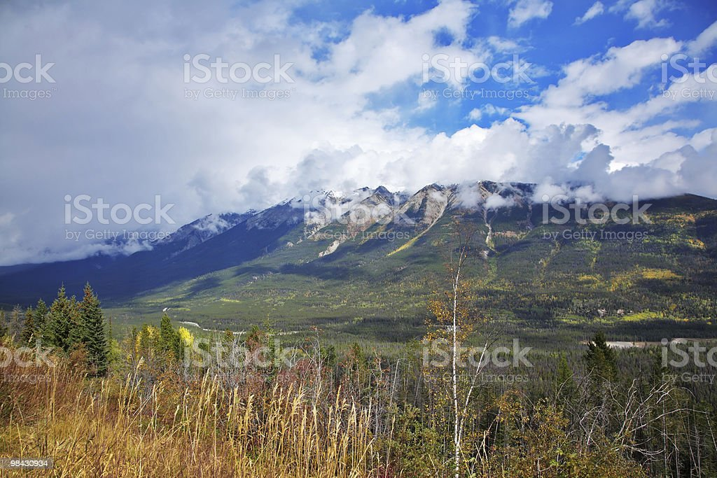 Yellowstone national park in the USA. royalty-free stock photo