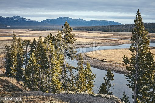 Yellowstone National Park landscape, color toning applied, Wyoming, USA.