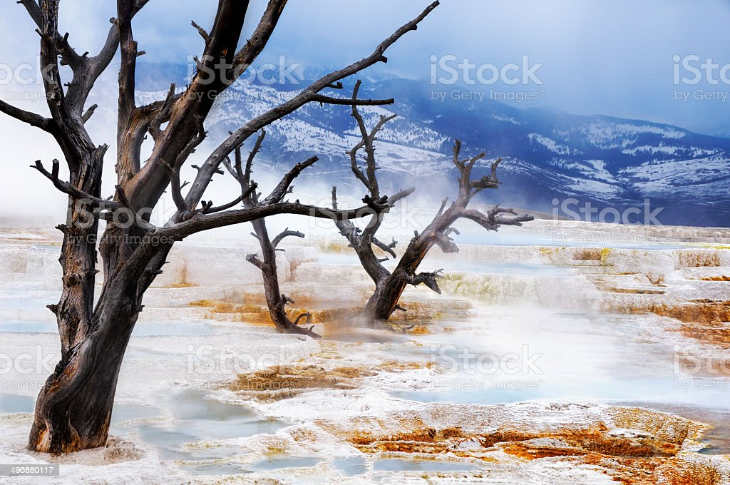 Yellowstone National Park - Mammoth Hot Springs - April 2008 stock photo