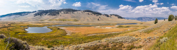 Yellowstone National Park, Park County, Wyoming, United States. Lamar River in the Lamar Valley - foto stock
