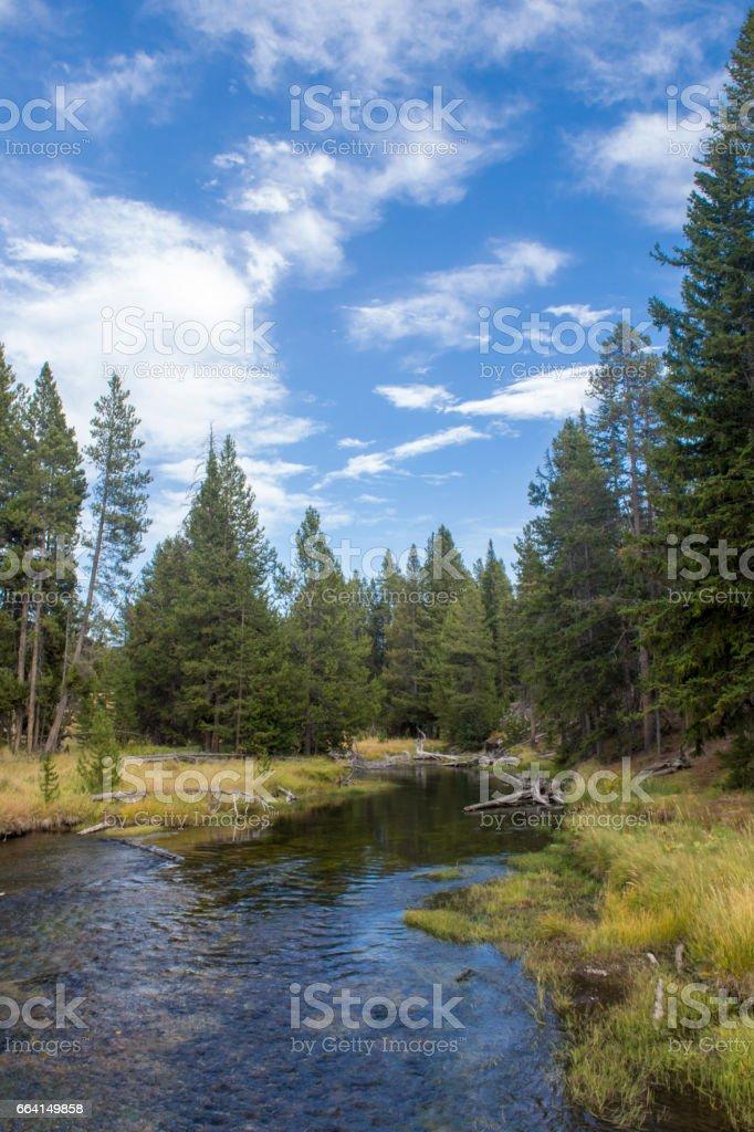 Yellowstone National Park, USA stock photo