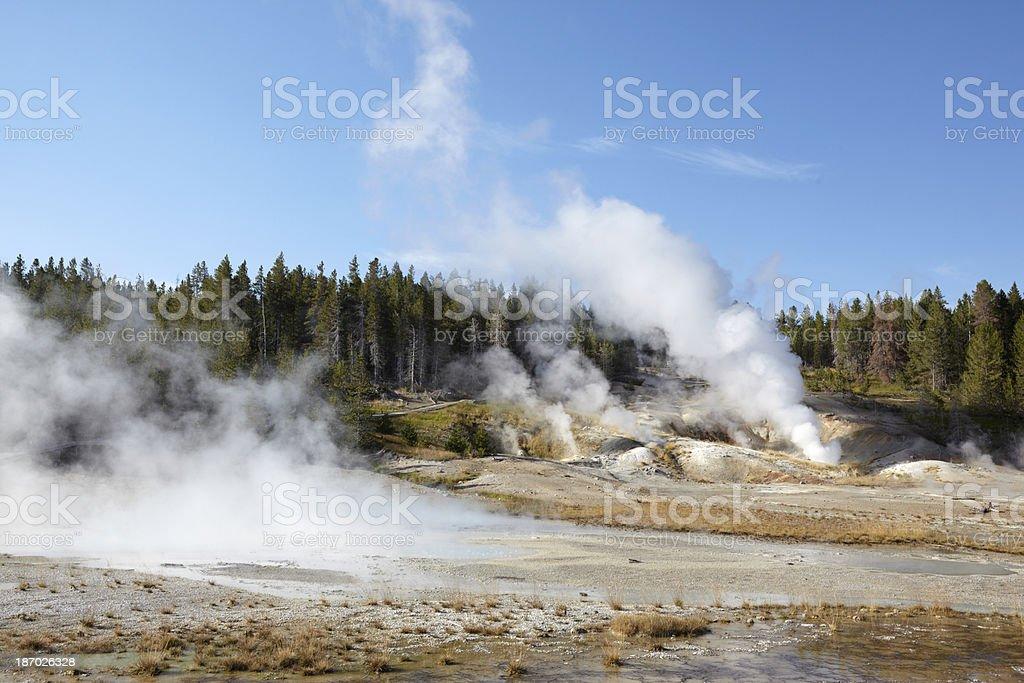 Yellowstone : Norris Geyser Basin stock photo