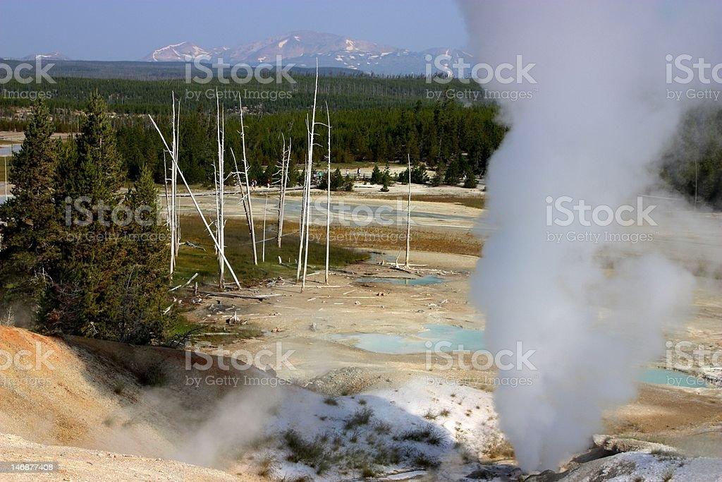 Yellowstone Norris Geyser royalty-free stock photo
