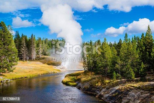 Yellowstone Park (iii)