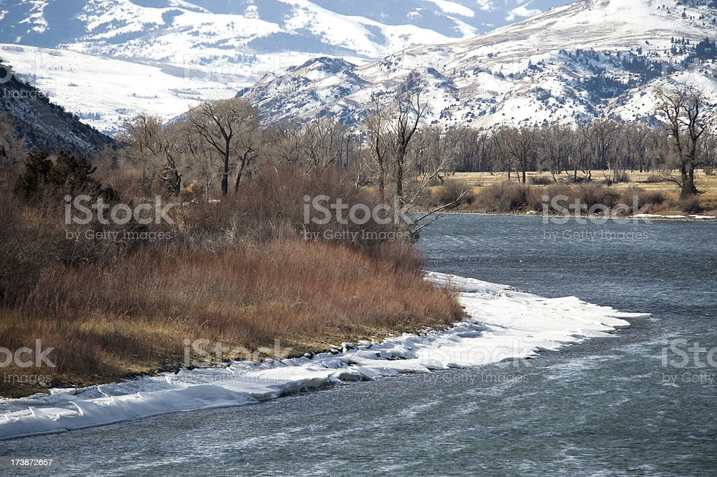 Yellowstone River in winter with mountain background royalty-free stock photo