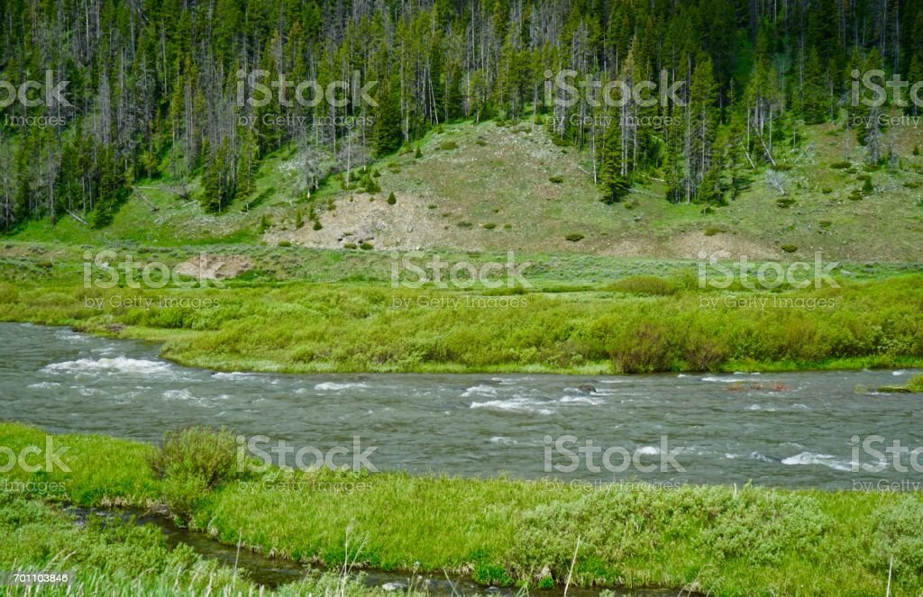 NW Yellowstone River stock photo