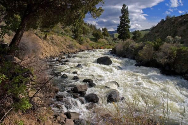 Yellowstone River Whitewater in May, Wyoming stock photo
