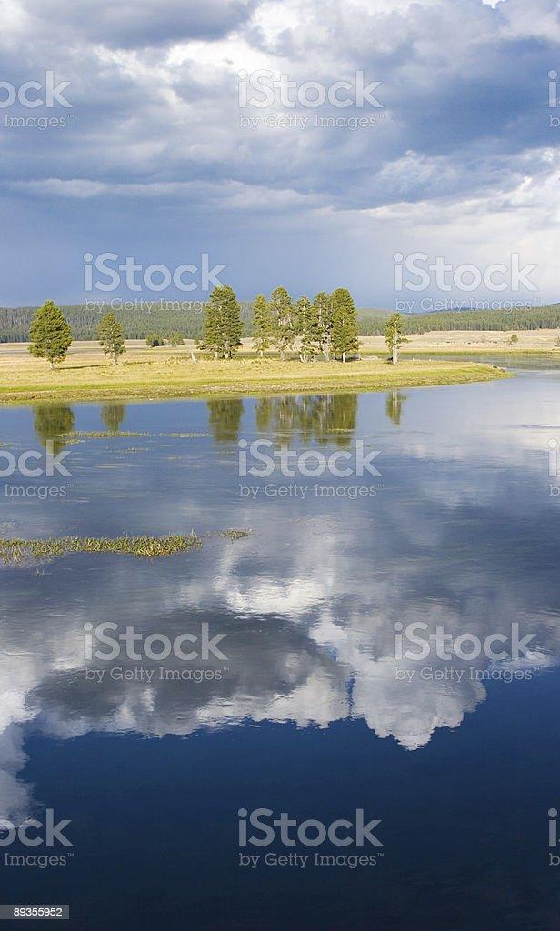 Rzeka Yellowstone, Wyoming zbiór zdjęć royalty-free