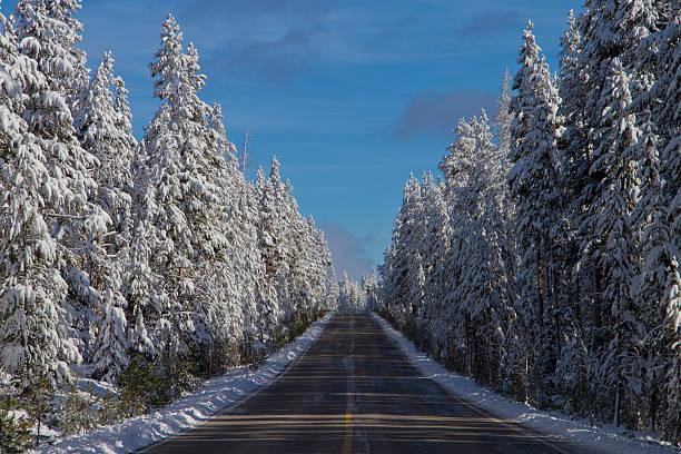 Yellowstone Road in Winter stock photo