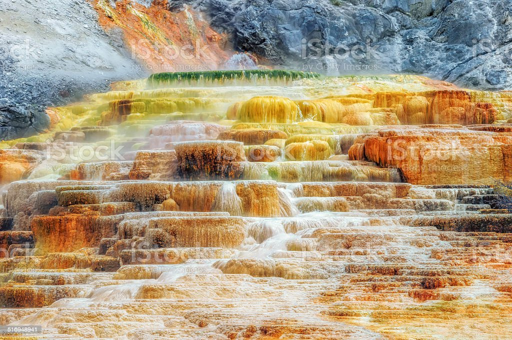 Yellowstone, travertine terrace, hot springs. stock photo