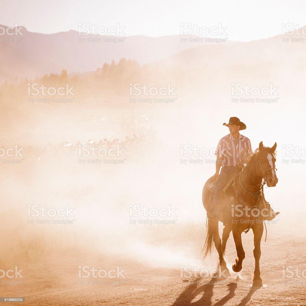 Yellowstone wrangler stock photo
