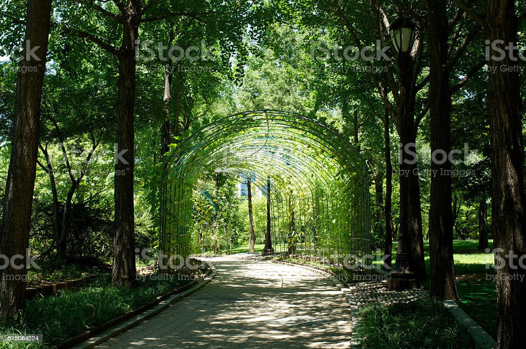 Yeouido Park in Seoul in summer, South Korea stock photo