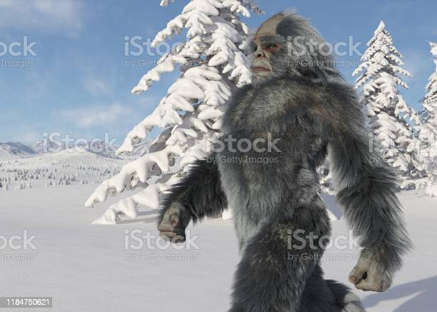 Yeti winter in the forest 3d illustration picture id1184750621?b=1&k=6&m=1184750621&s=612x612&h=ityyhuli90vb dtwgbbkif97svqf3ig0zlzmg4vesvs=