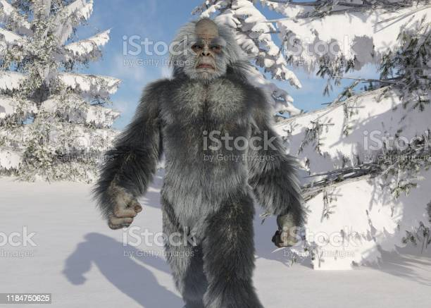 Yeti winter in the forest 3d illustration picture id1184750625?b=1&k=6&m=1184750625&s=612x612&h=roux0stjhrta4xm8dvlrkf26os 5szbtf8t20wrtt60=