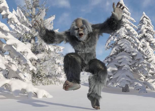 Yeti winter in the forest 3d illustration picture id1184750633?b=1&k=6&m=1184750633&s=612x612&w=0&h=tvrtnveafca6hlpd6gpkrztlcqvh5b i6dwzj t4o8q=