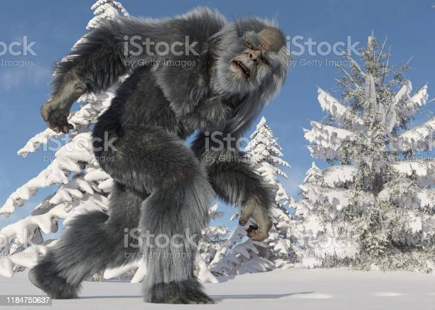 Yeti winter in the forest 3d illustration picture id1184750637?b=1&k=6&m=1184750637&s=612x612&h=7aitb9xujw wm7cbjo6grwhjaong8a azewqpwx62ry=