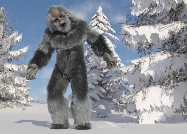 Yeti winter in the forest 3d illustration picture id1184750643?b=1&k=6&m=1184750643&s=612x612&w=0&h=ruujbcfzoe3zphmk6mohprdk4q7cms6xtvzudraolb4=