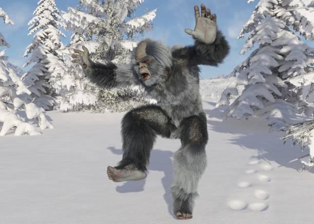 Yeti winter in the forest 3d illustration picture id1184750652?b=1&k=6&m=1184750652&s=612x612&w=0&h=dgbnfej8jiqupgj50vuzrc lbe7iwtzofurperb3puk=