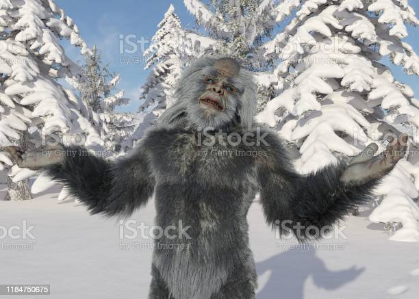 Yeti winter in the forest 3d illustration picture id1184750675?b=1&k=6&m=1184750675&s=612x612&h=4h2zbebq6j5 wdayzztcaatk6wb93k1hdatvixnqi74=