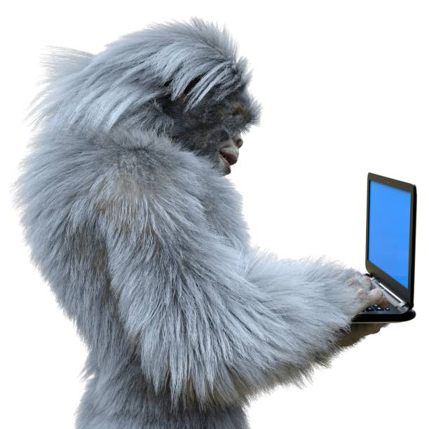 Yeti with laptop concept 3d illustration isolated on white background picture id1185204169?b=1&k=6&m=1185204169&s=612x612&w=0&h=2y2jq6zoxz5xgl6mm5eub x9hxcnnooorfciqoos2dy=