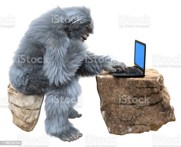 Yeti with laptop concept 3d illustration isolated on white background picture id1185204184?b=1&k=6&m=1185204184&s=612x612&h=gr2zicixkufjjqyqenwek5puxeawxkkppz89mwefhda=