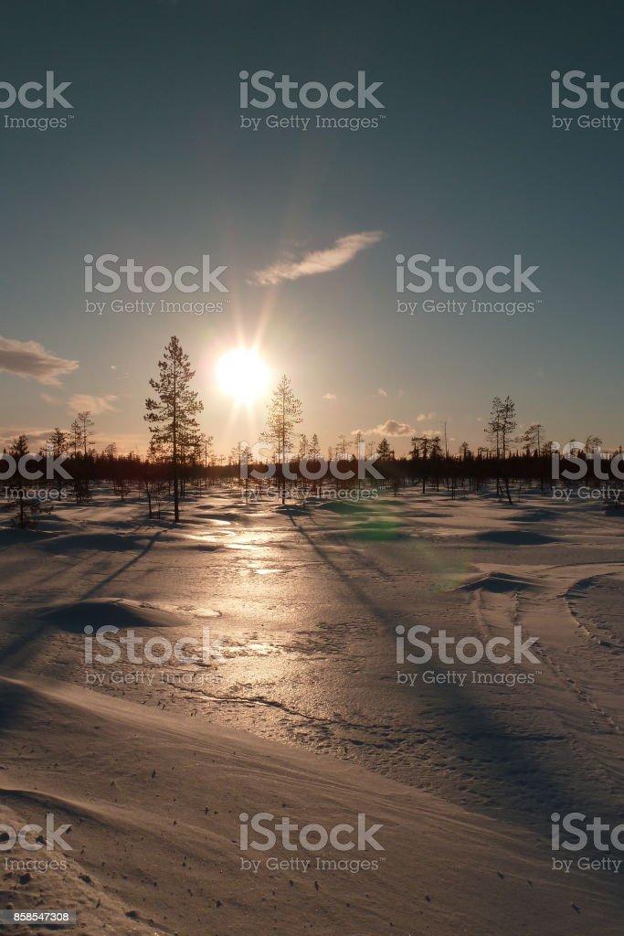 yllas, laponia, finland, snowmobile raid stock photo