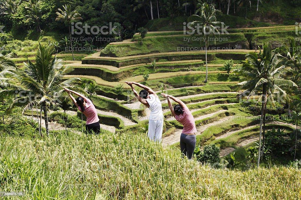 Yoga auf ein Reisfeld – Foto
