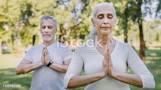 942580016istockphoto Yoga at park. Senior family couple exercising outdoors. 1172161103