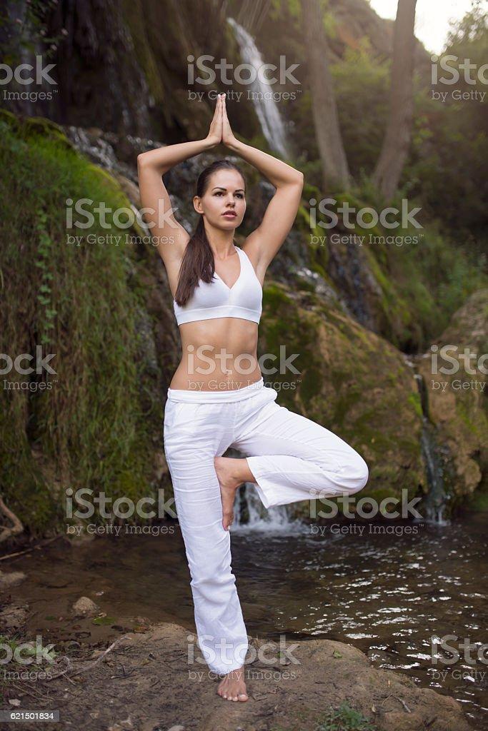 Yoga, beauty and vitality foto stock royalty-free