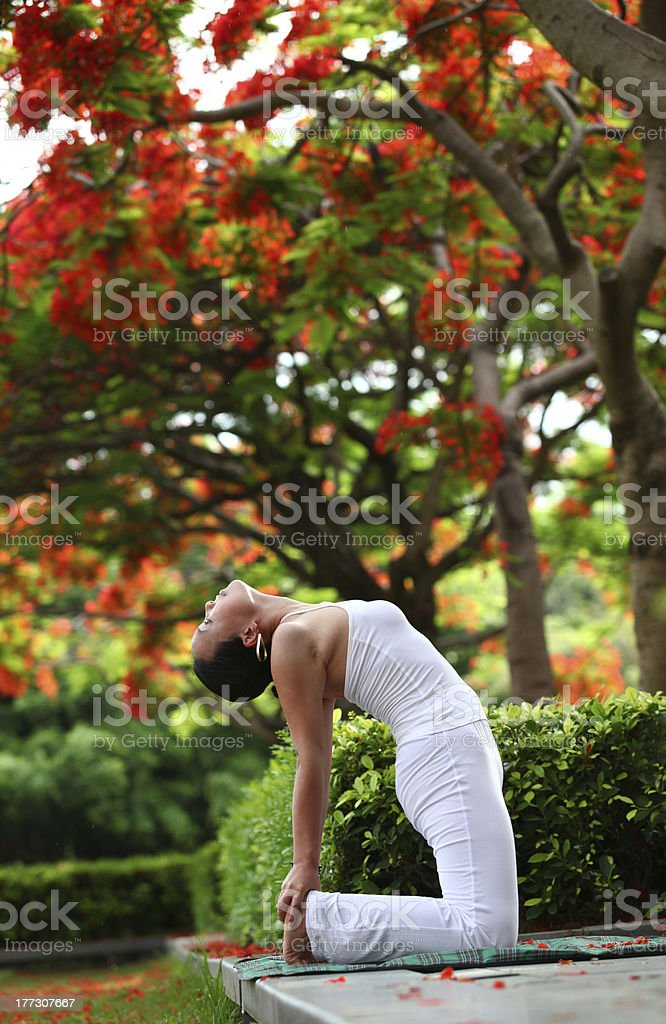 Yoga camel pose royalty-free stock photo