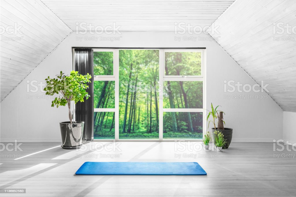Yoga gym room in a green forest stock photo