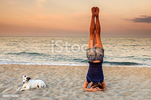 istock Yoga Headstand on the beach with his dog 588579090