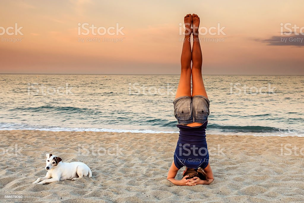 Yoga Headstand on the beach with his dog stock photo